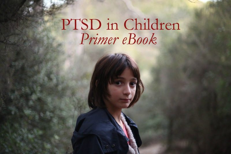 PTSD in Children Primer: What Is It, What Causes It, What's It Look Like, and What to Do about It Kindle Edition